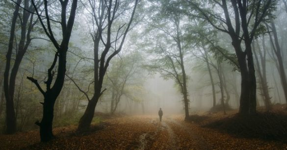 bigstock-Man-walking-in-magical-mysteri-82039367-585x306